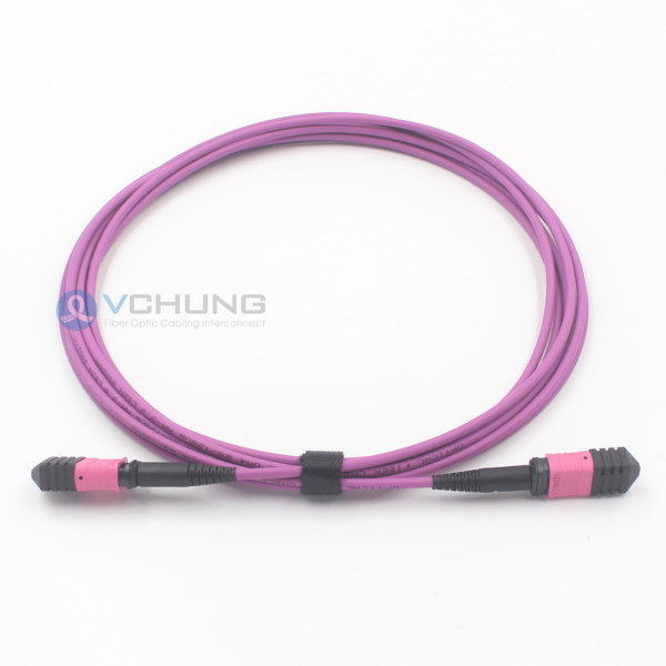 MPO Connector Pre-Termimated Female 24 Core I/L 0.70dB Trunk 3.0mm LSZH OM4 Fiber Optical Cable